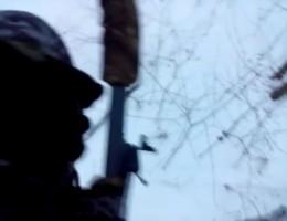 Охотник забрался на дерево